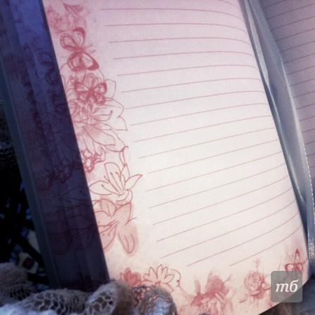girls-diary-04