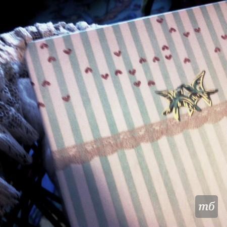 girls-diary-05